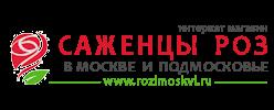 Саженцы роз в Москве и Подмосковье